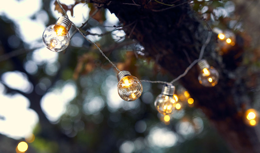 Garden string lights hanging in green tree